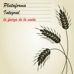Plataforma Integral